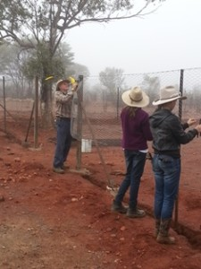 Outback Links volunteers near Mitchell